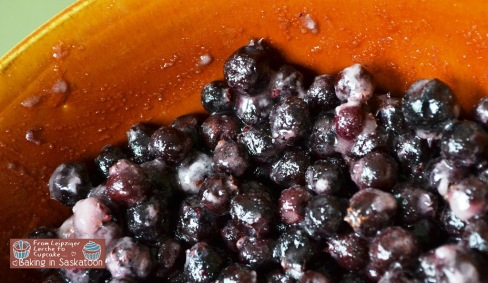 Saskatoon berry mix in a bowl