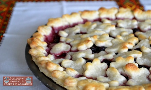 Saskatoon Berry pie in a pan on a table cloth