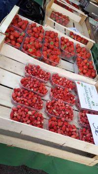 Strawberries wild