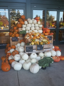 Mixed Pumpkins